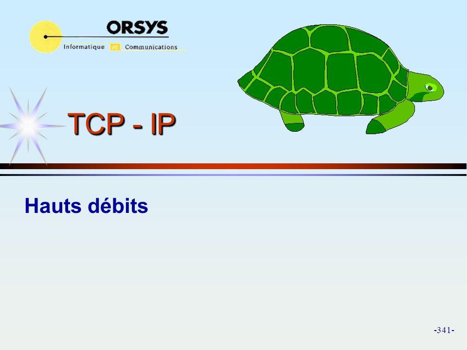 TCP - IP Hauts débits