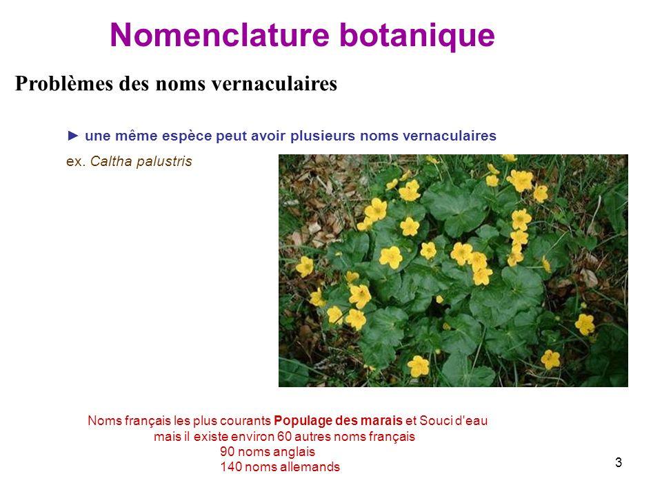Nomenclature botanique