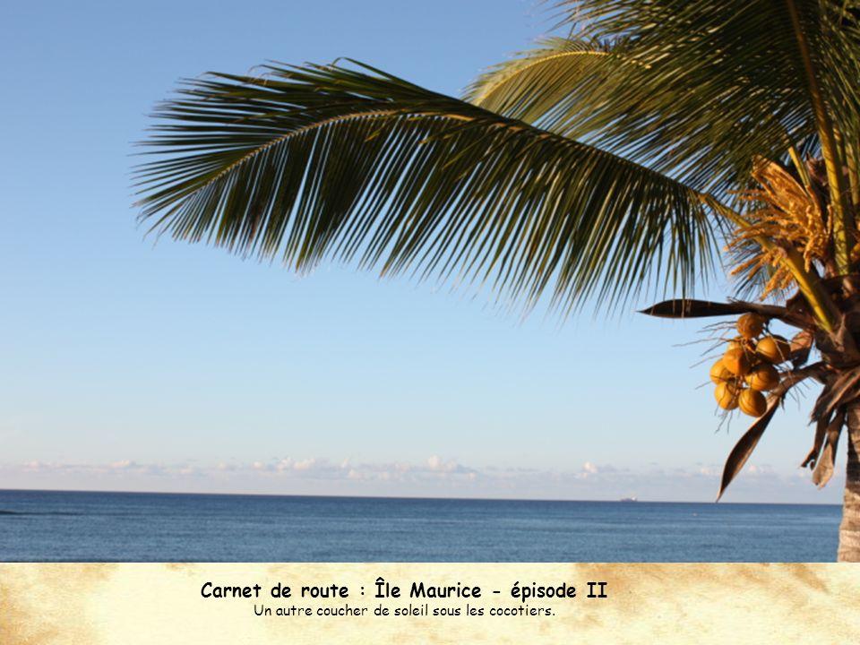 Carnet de route : Île Maurice - épisode II