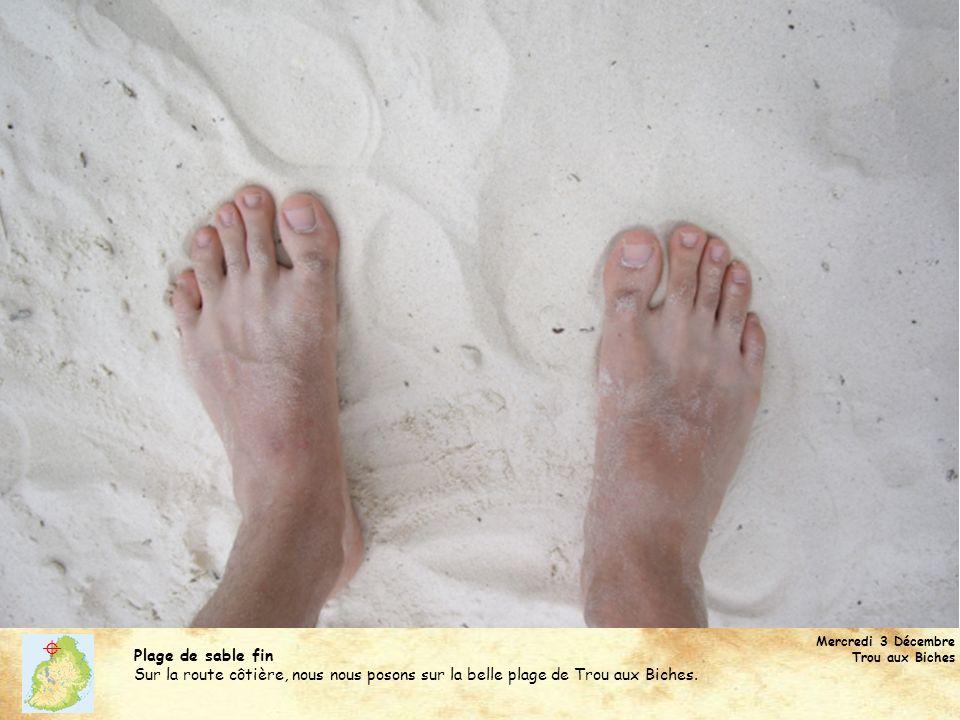  Mercredi 3 Décembre. Trou aux Biches. Plage de sable fin.