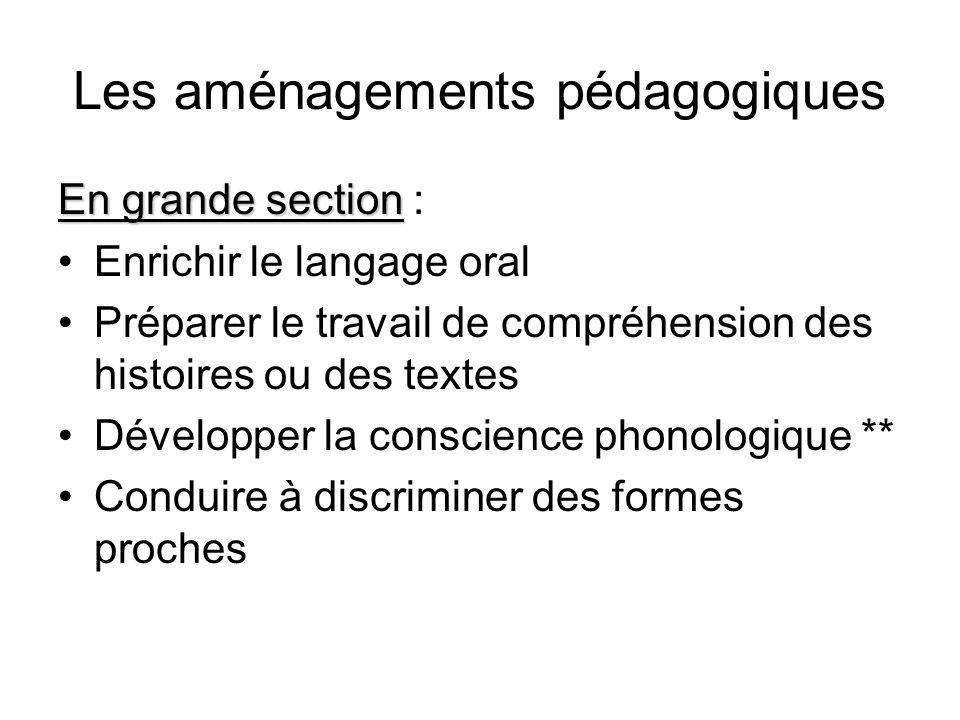 Les aménagements pédagogiques