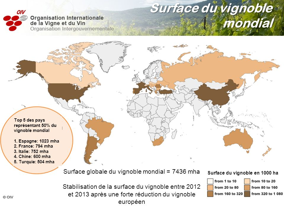 Surface globale du vignoble mondial = 7436 mha