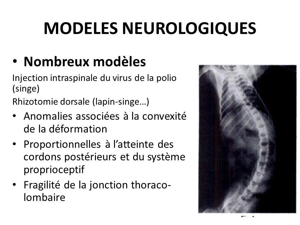 MODELES NEUROLOGIQUES