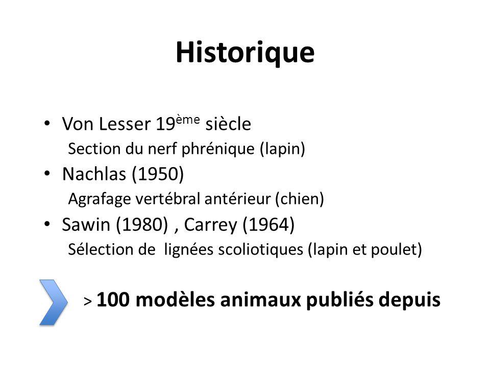 Historique Von Lesser 19ème siècle Nachlas (1950)