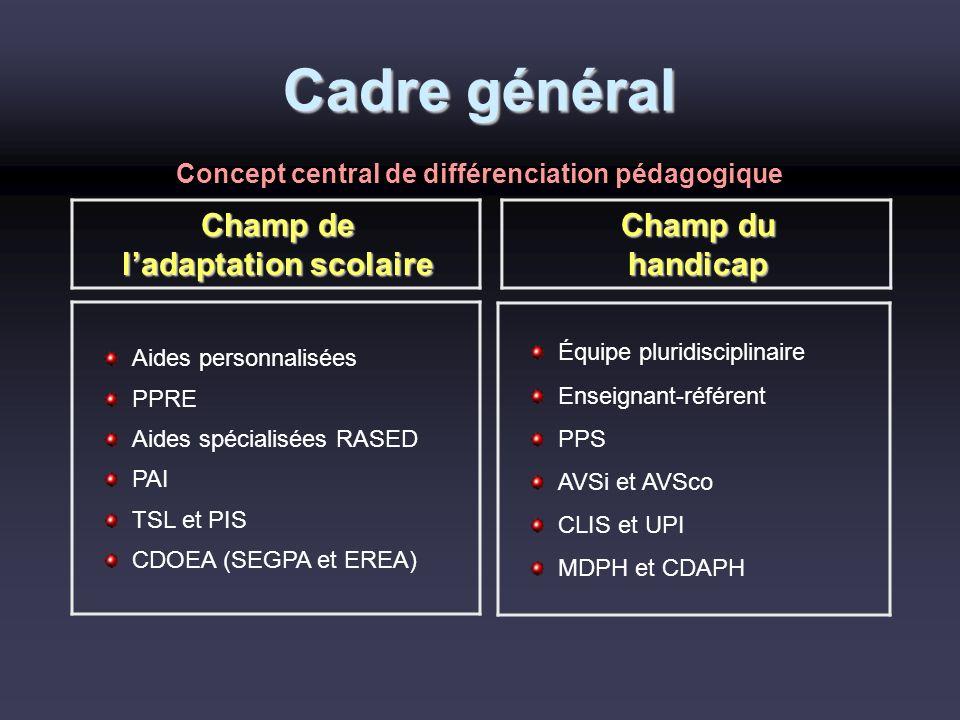Concept central de différenciation pédagogique l'adaptation scolaire