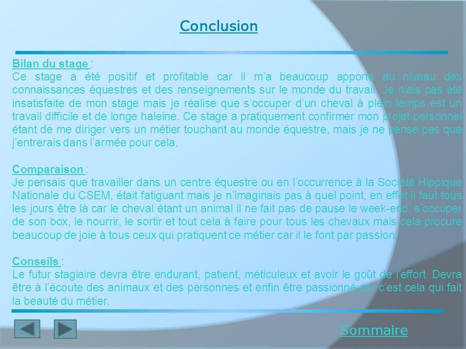 Conclusion Sommaire Bilan du stage :