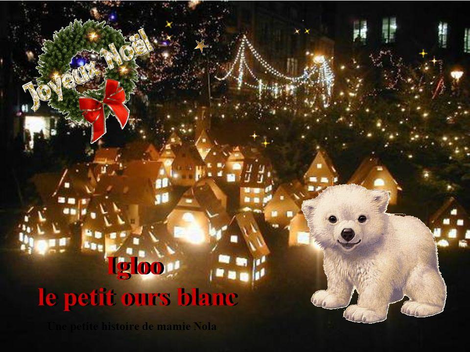 Igloo le petit ours blanc Igloo le petit ours blanc