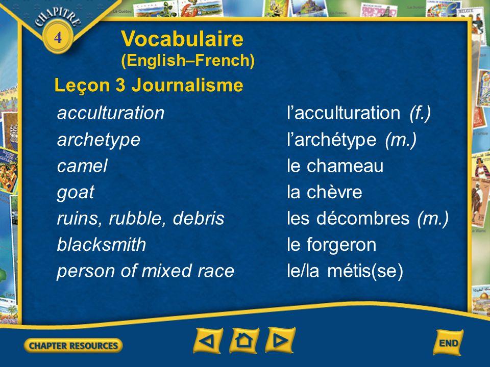 Vocabulaire Leçon 3 Journalisme acculturation l'acculturation (f.)