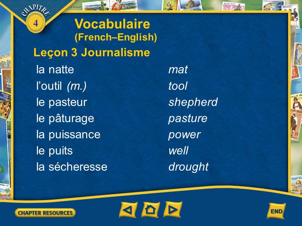 Vocabulaire Leçon 3 Journalisme la natte mat l'outil (m.) tool