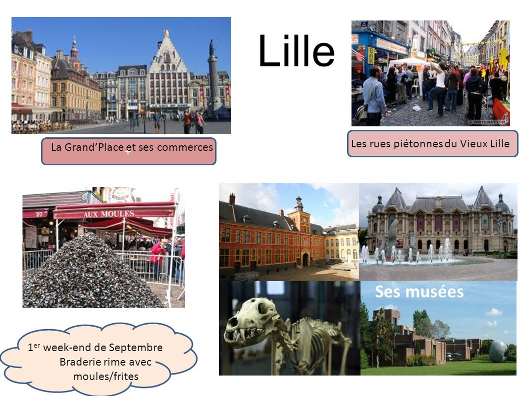 Lille Ses musées Les rues piétonnes du Vieux Lille