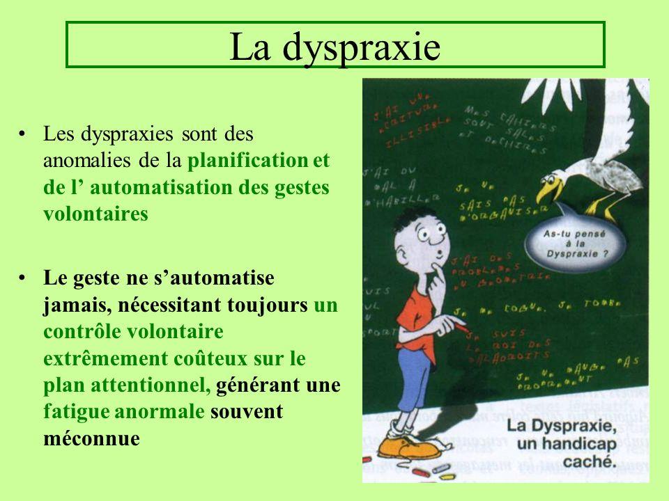 La dyspraxie Les dyspraxies sont des anomalies de la planification et de l' automatisation des gestes volontaires.