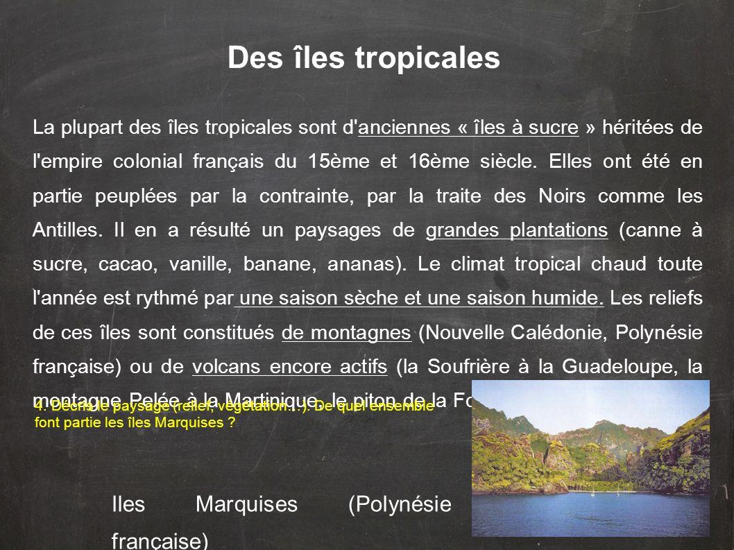 Des îles tropicales Iles Marquises (Polynésie française)