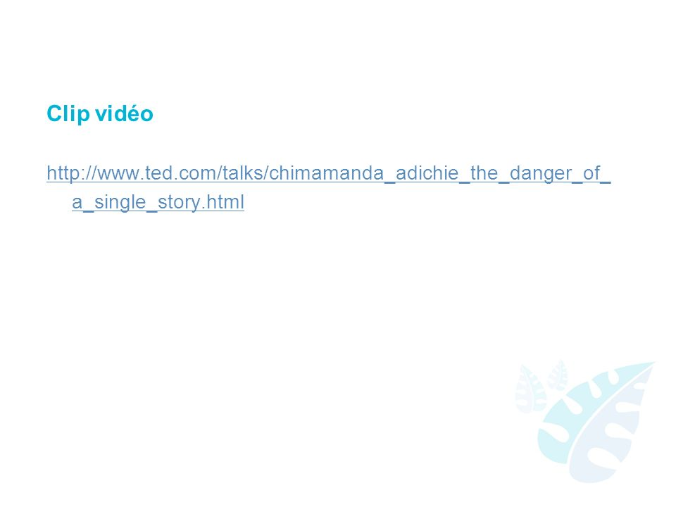 Clip vidéo http://www.ted.com/talks/chimamanda_adichie_the_danger_of_a_single_story.html.