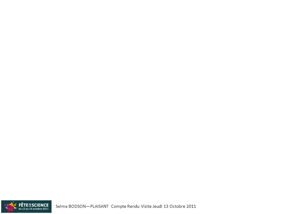 Selma BODSON—PLAISANT Compte Rendu Visite Jeudi 13 Octobre 2011