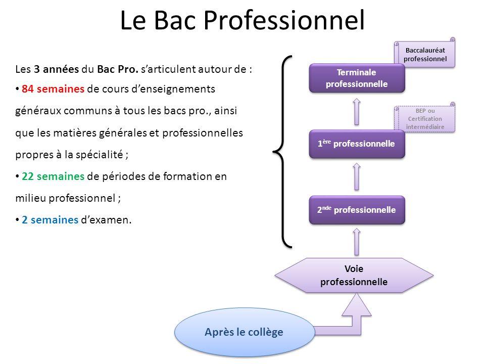Le Bac Professionnel Les 3 années du Bac Pro. s'articulent autour de :