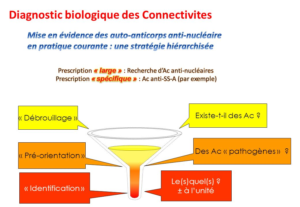 Diagnostic biologique des Connectivites