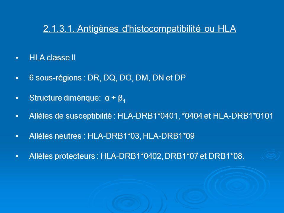 2. 1. 3. 1. Antigènes d histocompatibilité ou HLA ▪. HLA classe II ▪