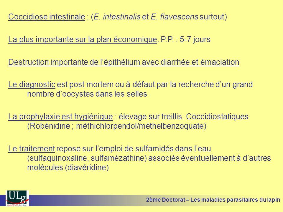 Coccidiose intestinale : (E. intestinalis et E. flavescens surtout)