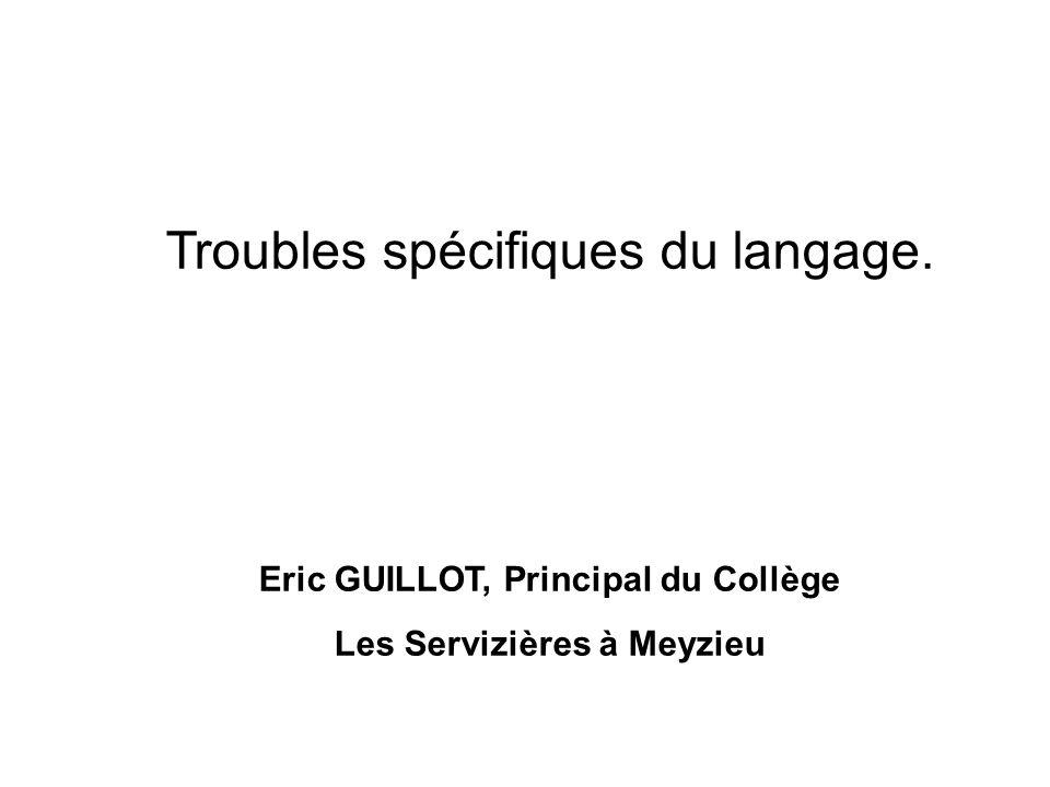 Eric GUILLOT, Principal du Collège Les Servizières à Meyzieu