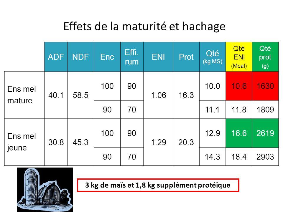3 kg de maïs et 1,8 kg supplément protéique