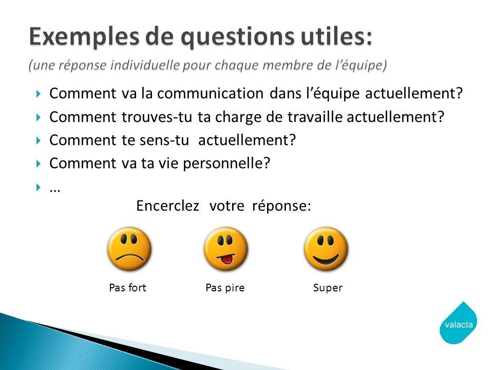 Exemples de questions utiles: (une réponse individuelle pour chaque membre de l'équipe)