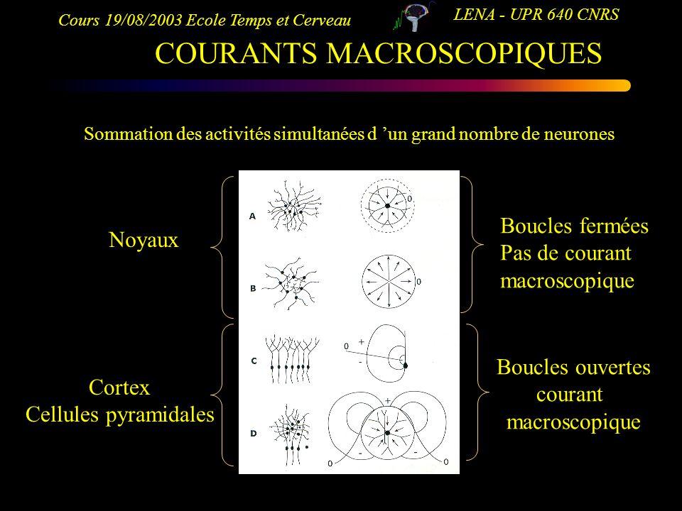 COURANTS MACROSCOPIQUES