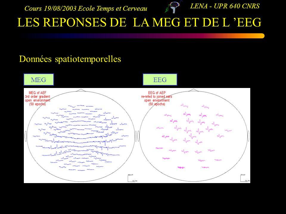 LES REPONSES DE LA MEG ET DE L 'EEG