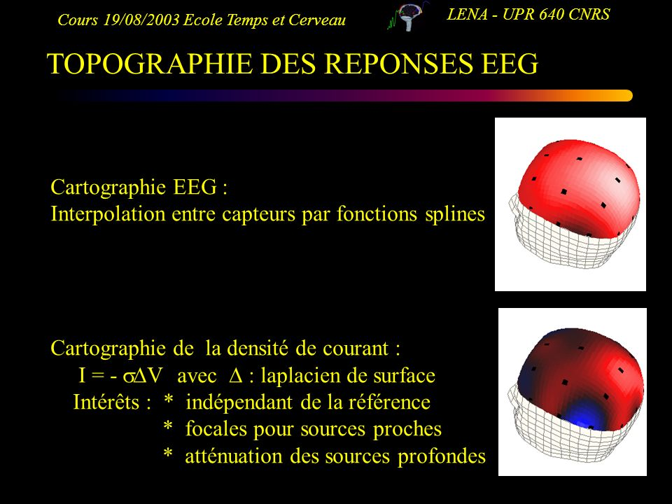 TOPOGRAPHIE DES REPONSES EEG