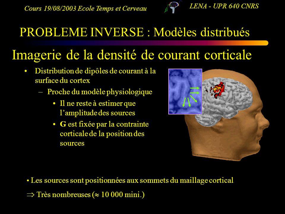 Imagerie de la densité de courant corticale