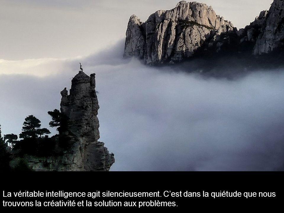 La véritable intelligence agit silencieusement