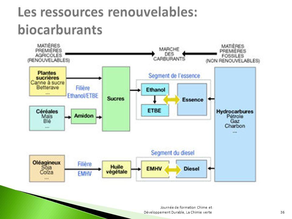 Les ressources renouvelables: biocarburants