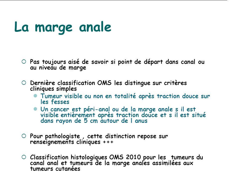 La marge anale Pas toujours aisé de savoir si point de départ dans canal ou au niveau de marge.