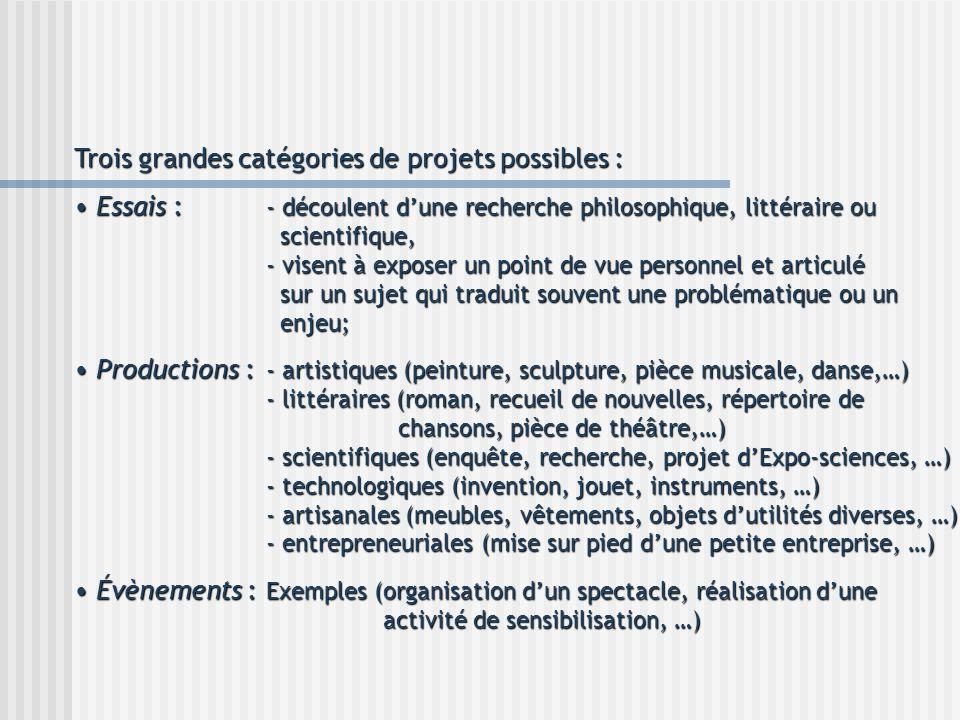 Trois grandes catégories de projets possibles :