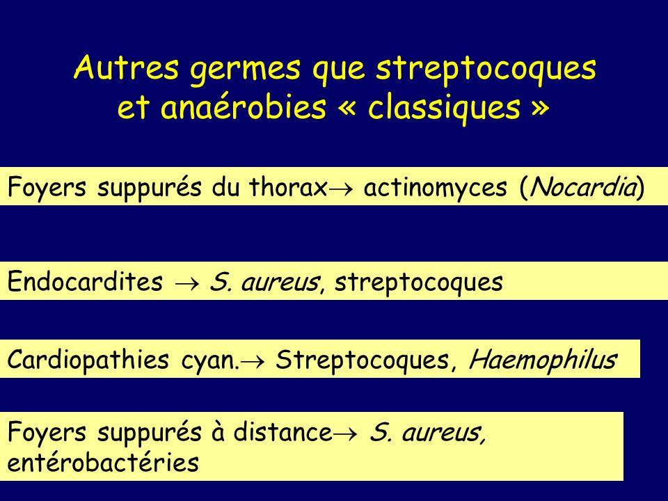 Autres germes que streptocoques et anaérobies « classiques »