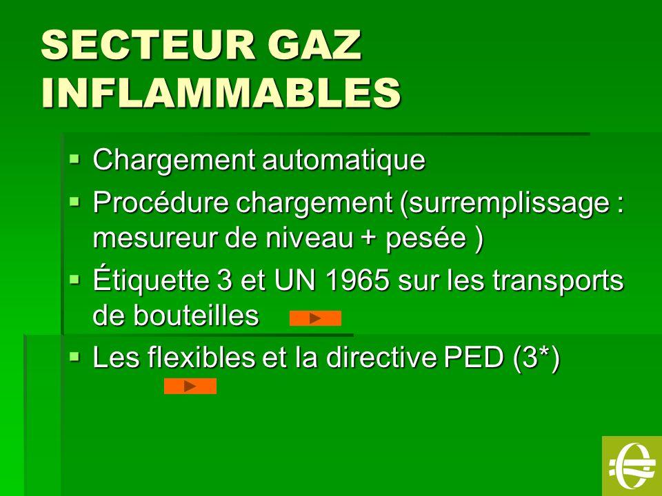 SECTEUR GAZ INFLAMMABLES