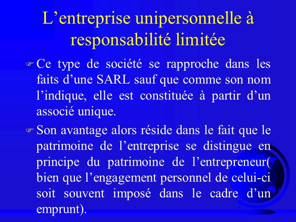 L'entreprise unipersonnelle à responsabilité limitée