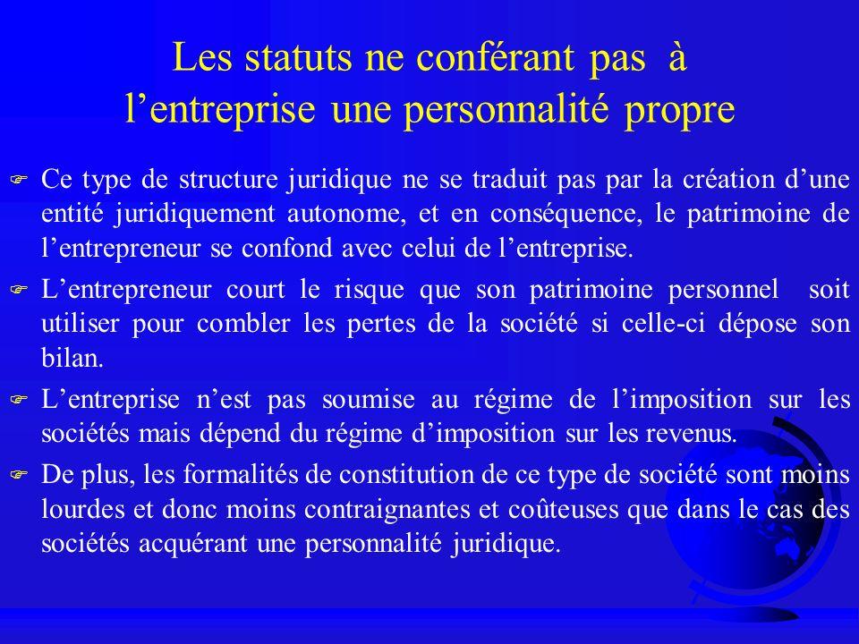 Les statuts ne conférant pas à l'entreprise une personnalité propre