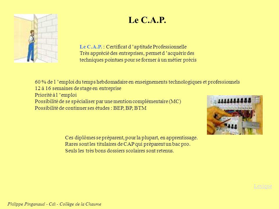 Philippe Pinganaud - Cdi - Collège de la Chaume
