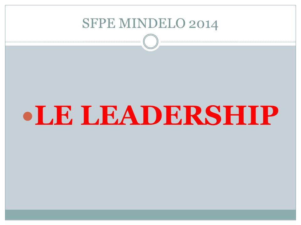 LE LEADERSHIP SFPE MINDELO 2014