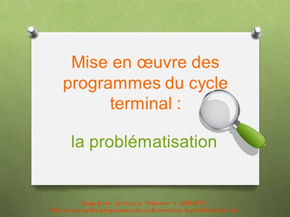 Mise en œuvre des programmes du cycle terminal :