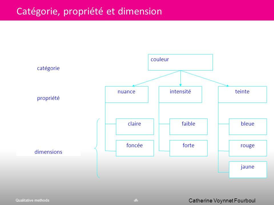 Catégorie, propriété et dimension
