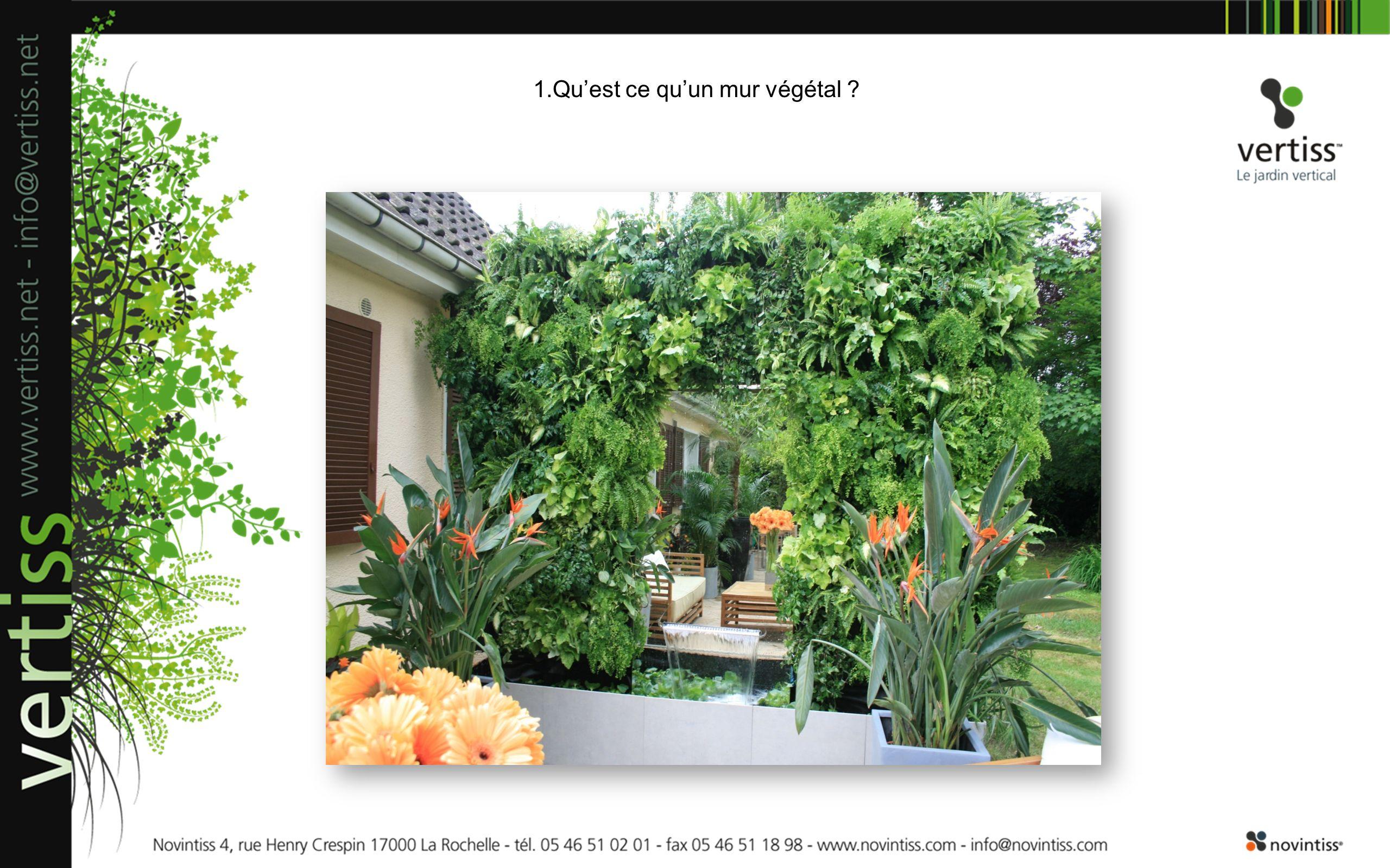1.Qu'est ce qu'un mur végétal