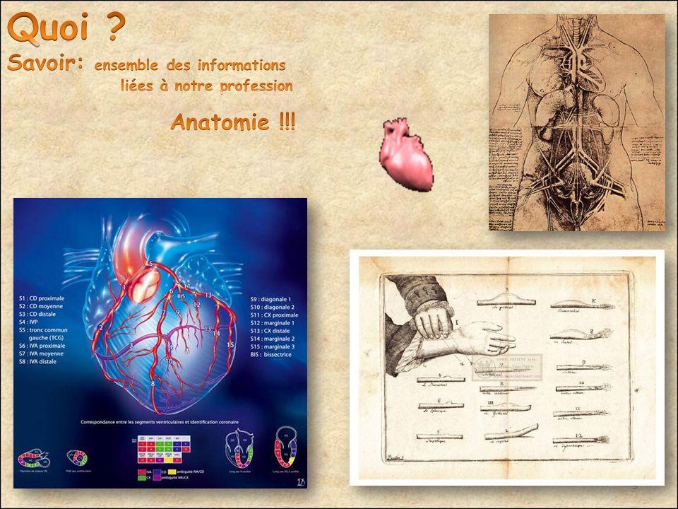 Quoi Savoir: ensemble des informations Anatomie !!!