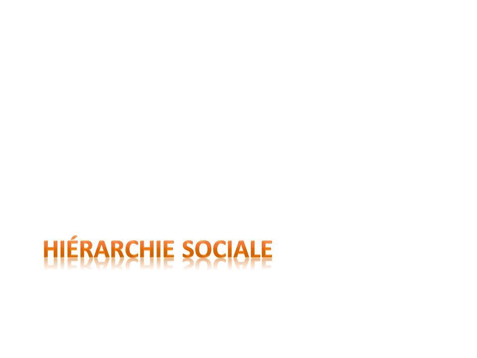 Hiérarchie sociale