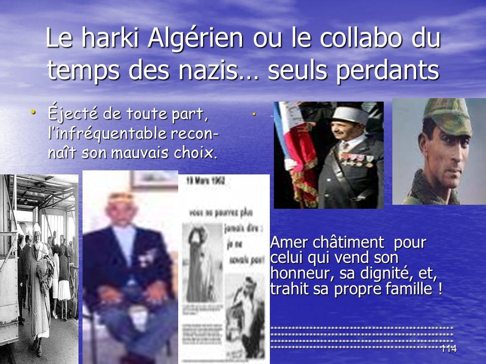 Le harki Algérien ou le collabo du temps des nazis… seuls perdants