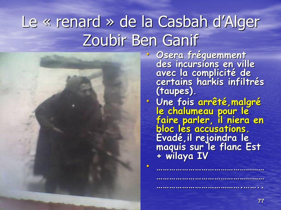 Le « renard » de la Casbah d'Alger Zoubir Ben Ganif