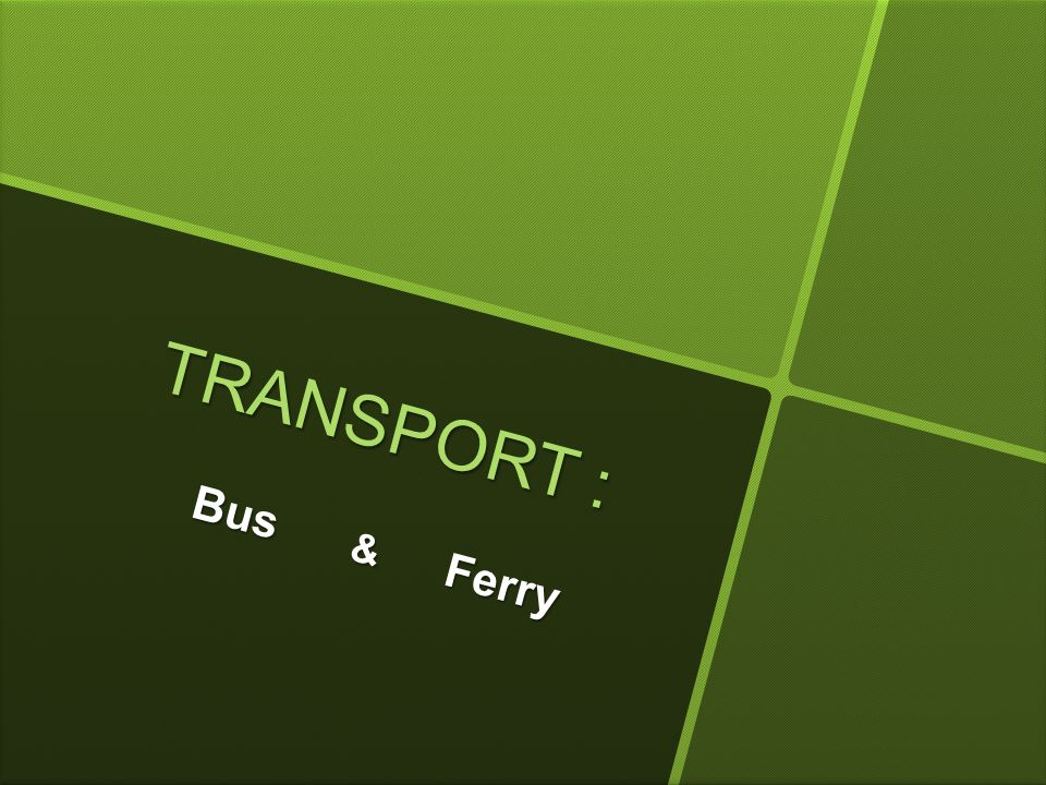 TRANSPORT : Bus & Ferry