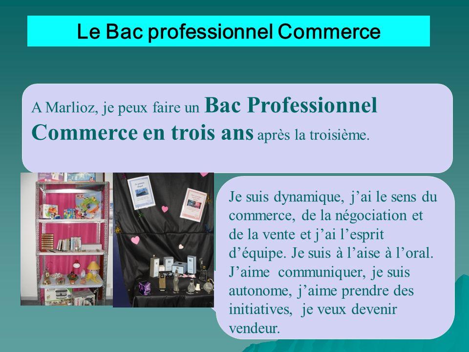 Le Bac professionnel Commerce
