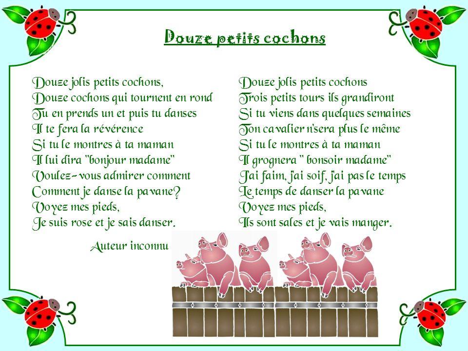 Douze petits cochons