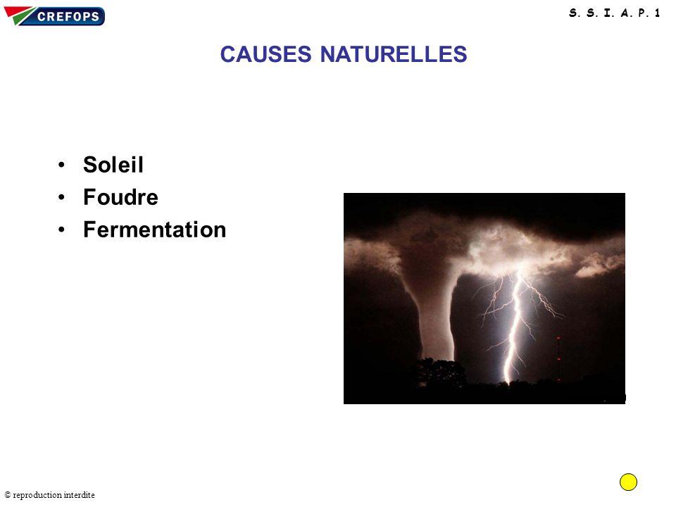 Causes naturelles CAUSES NATURELLES Soleil Foudre Fermentation